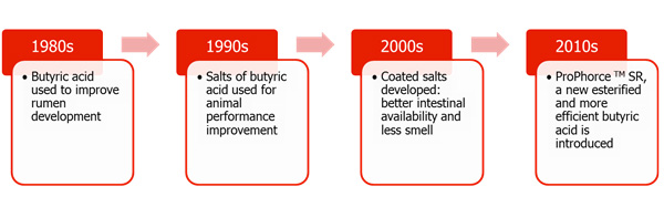 Development of butyric acid as feed additive
