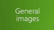 General images