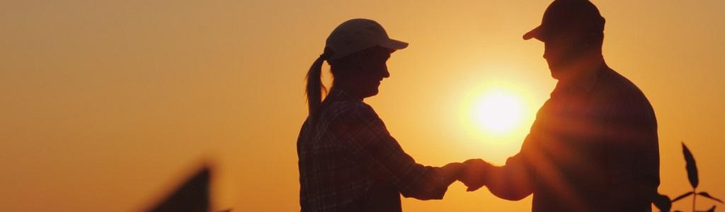 Handshake in sunrise
