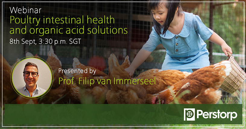 Webinar Poultry Intestinal Health and organic acid solutions
