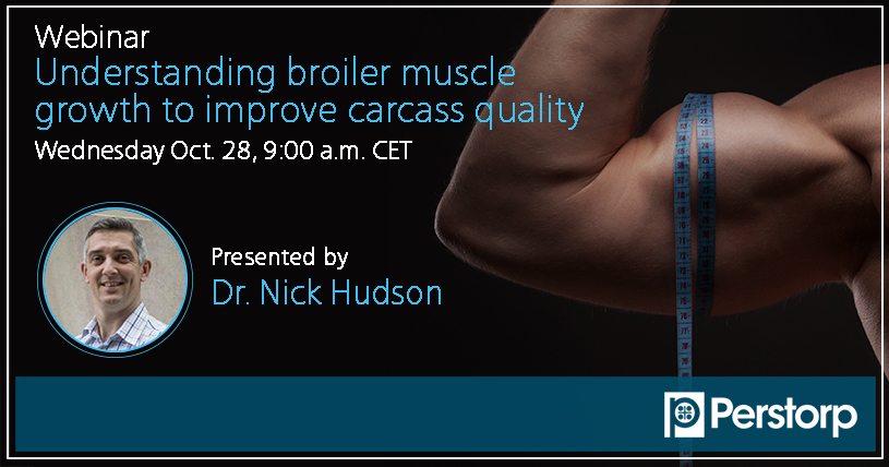 Webinar Understanding broiler muscle growth to improve carcass quality