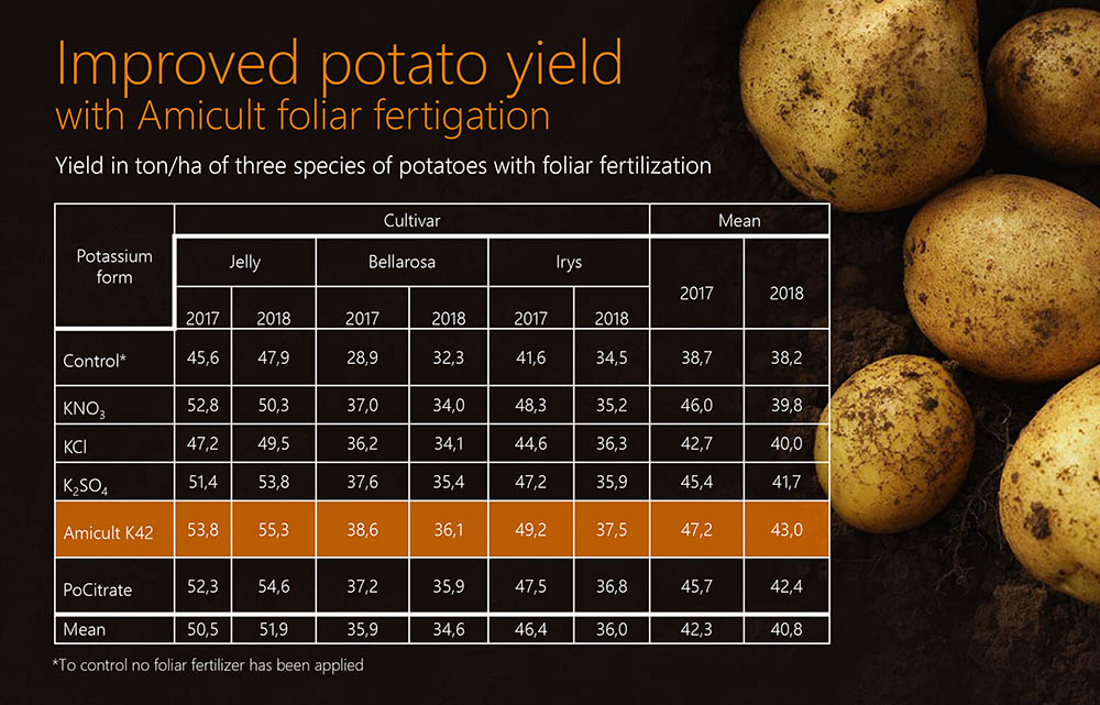 Chart over how much Amicult can improve potato yield