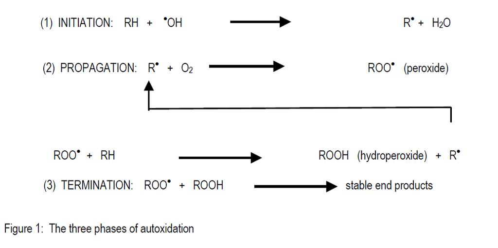 The autoxidation process