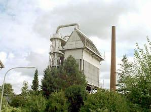 Bruchhausen plant