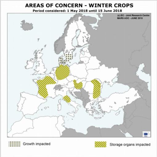 Winter crops 2018