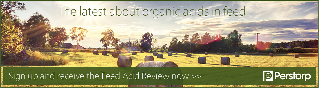 Download the Feed Acid Review