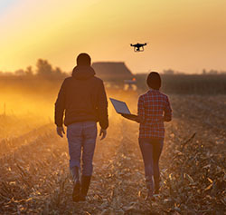 The emergence of smart farms