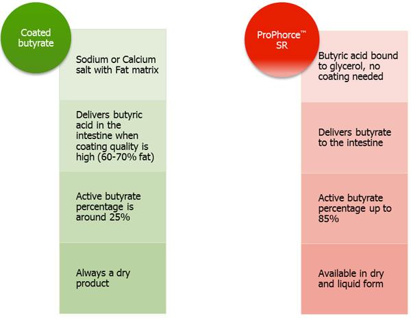 Comparison between coated salts of butyric acid and ProPhorce™ SR