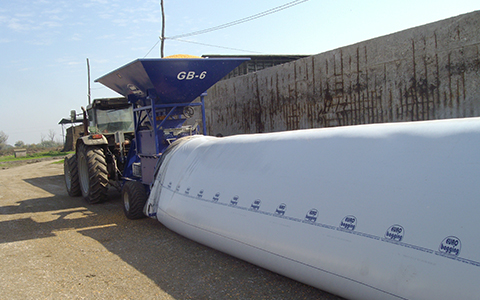Bagged silage