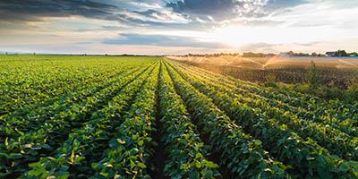 Perstorp lanserar växtnäringsprodukt