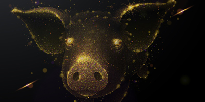 Holistic feed strategies for swine: safeguard gut health and feed safety
