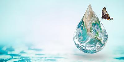 Waterborne alkyds