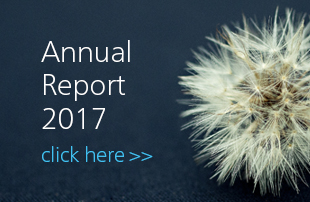 Perstorp Annual Report 2017